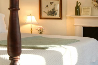 View of Foxfield Inn's Audubon Room with fireplace, queen size bed.