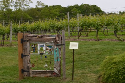 Vines and gate at Truro Vineyards of Cape Cod