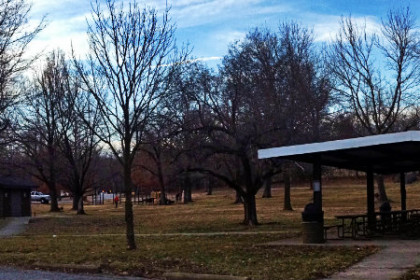 fall seasonal image of park with barren trees and picnic shelter