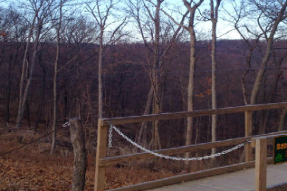 barren woods in the fall with a walk way and zip line set up