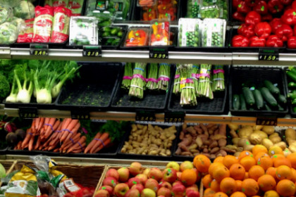 Array of fresh vegetables
