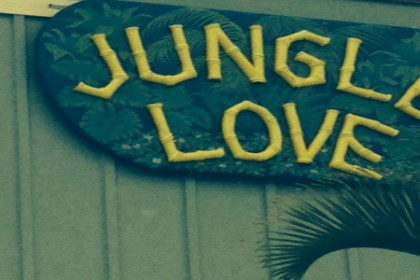 Green sign with yellow letters reading Jungle Love