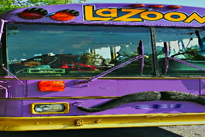 Purple sided bus with yellow letters at top reading LaZoom