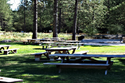 Perry Creek Picnic area, grassy lawn with picnic tables