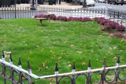 small plot of grass with benches and wrought iron fencing