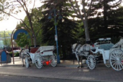 Duluth Top Hat Carriages